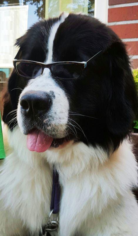Charis mit Sonnenbrille