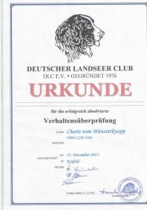 Urkunde_Charis_vom_Muensterknapp_DLC_Verhaltenspruefung
