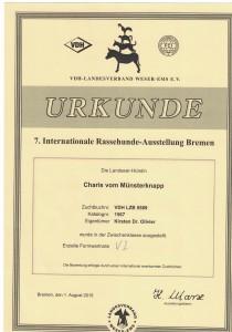 Urkunde_Charis_vom_Muensterknapp_Nationale_Rassehund_Ausstellung_Bremen_2