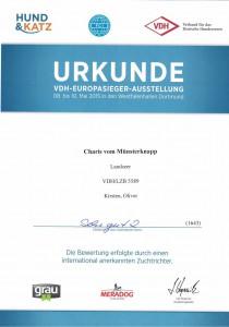 Urkunde_Charis_vom_Muensterknapp_VDH_Europa_Ausstellung_Dortmund